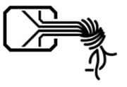 Chaos Computer Club (CCC)'s logo': in black over a white background, the outline of an image that resembles a key and also an electronic circuit. From the inside of a rectangle with chamfered corners, 4 lines direct point toward the midpoint of its right side; from there, they align perpendicularly to this side and leave the rectangle, parallel to one another. After a distance of about half the width of the rectangle, the lines twist, forming a knot. Resembling wires, the lines dangle, twisted, below the knot.